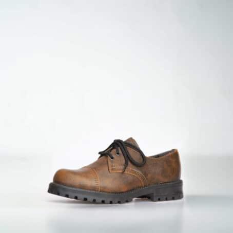 Antiikpruunid Aparaadid (kingad)